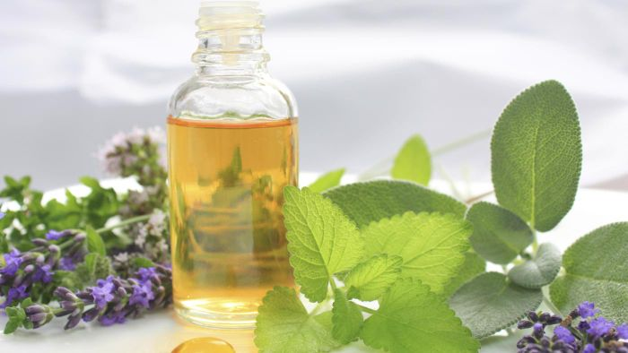 What Is Borage Oil Used For?