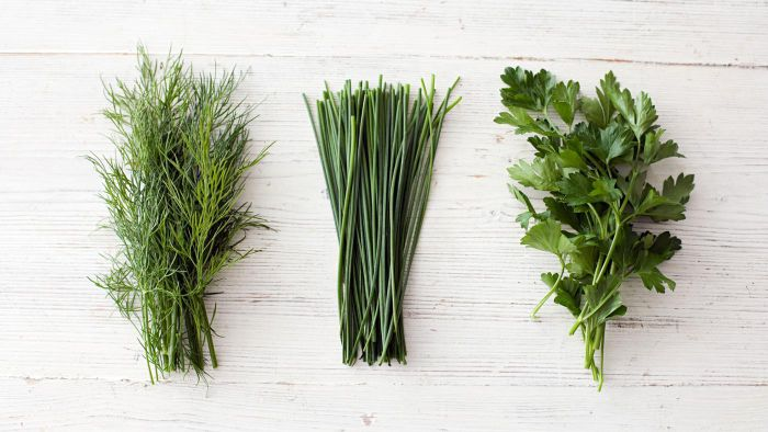 What Are Some Herbs That Can Boost the Human Immune System?