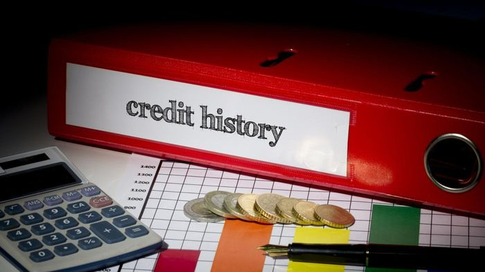 Does the Credit Bureau of Canada have access to America's credit databases?