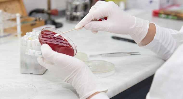 What Is the Antibiotic Treatment for MRSA?