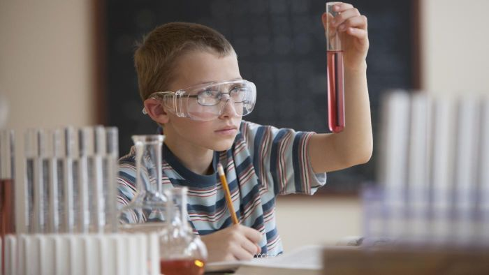 What Are Some Simple Elementary School Science Experiments?