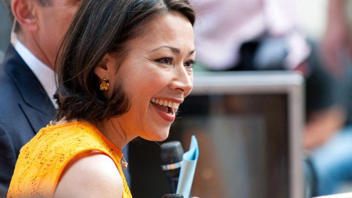 What Are the Reported Causes of the Ann Curry and Brian Ross Divorce?