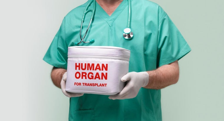 How Do You Arrange to Donate Your Body to Science After Your Death?