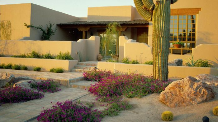 How Do You Plan Drought-Tolerant Landscaping?