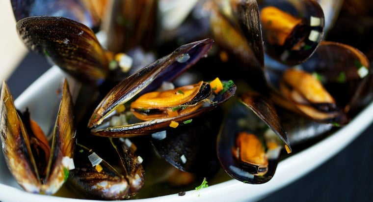 What Are Some Good Recipes for Cooking Mussels?