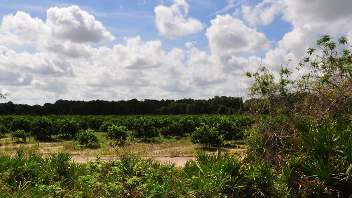 What are some facts about Parrish, Florida?