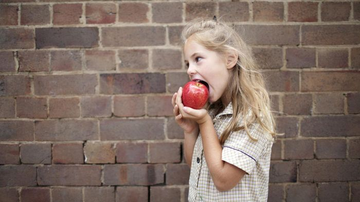 What Are Some Facts About Apples?
