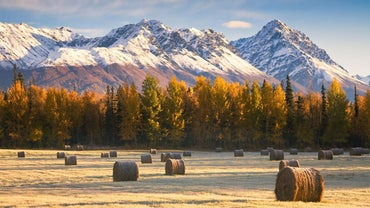How Do You Homestead in Alaska?