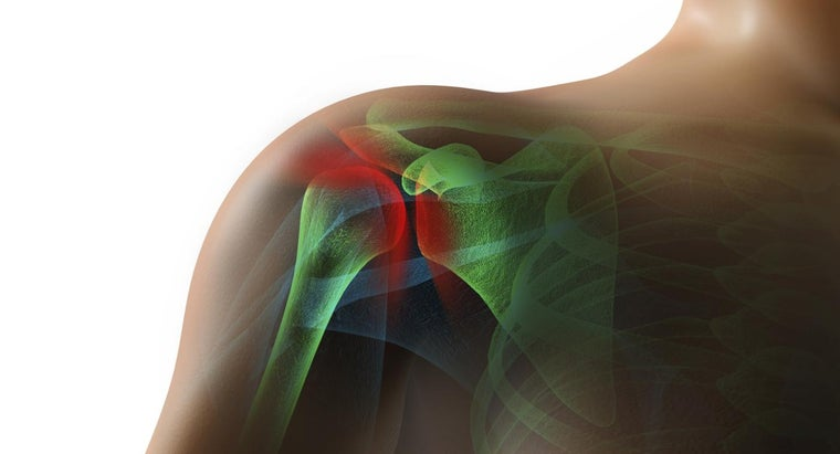 What Is a Rotator Cuff?