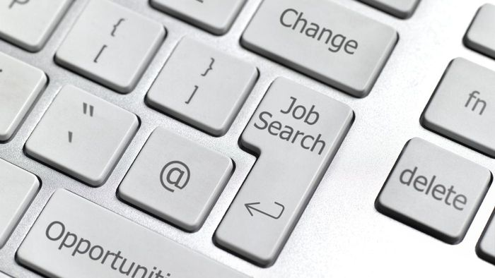 Which Websites Do Some Experts Recommend When Searching for Job Advertisements Online?
