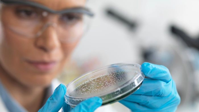 What Is the Incubation Period for C. Difficile?