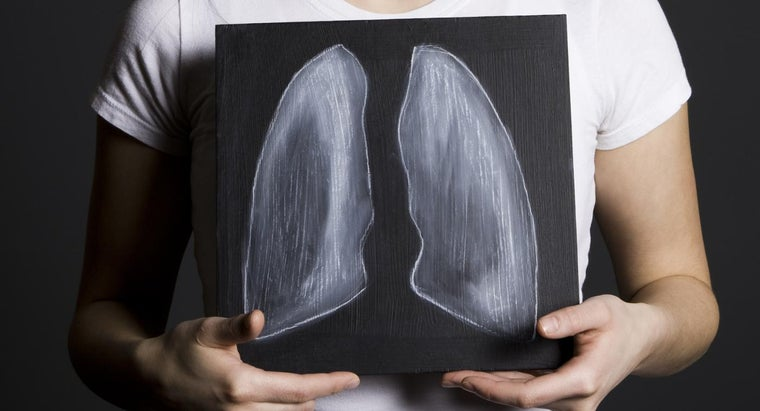 What Is the Survival Rate After a Lung Transplant?