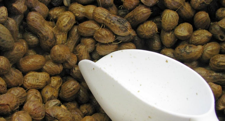 How Do You Boil Peanuts in a Crock-Pot?