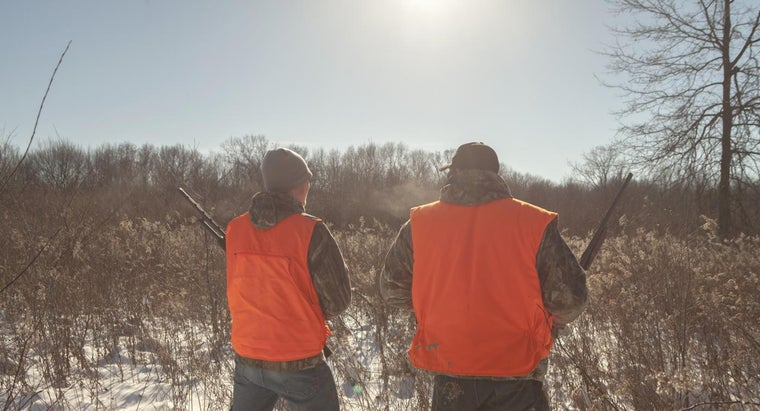 What Are the Dates for Hunting Season?