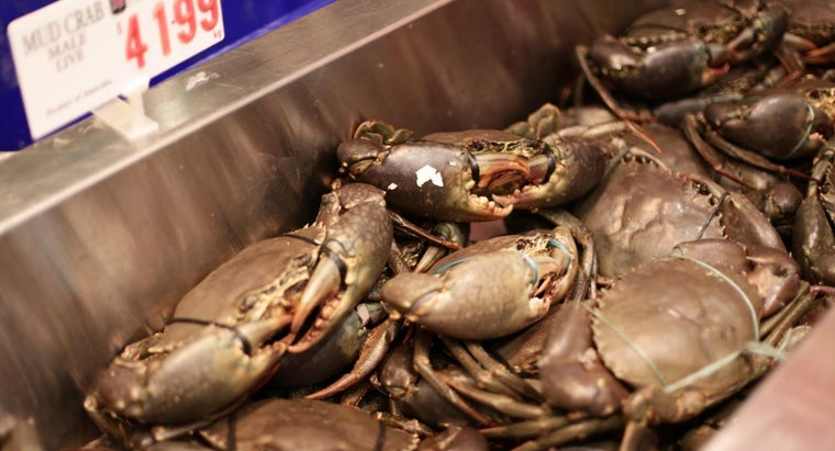 How Do You Thaw Frozen Crab?