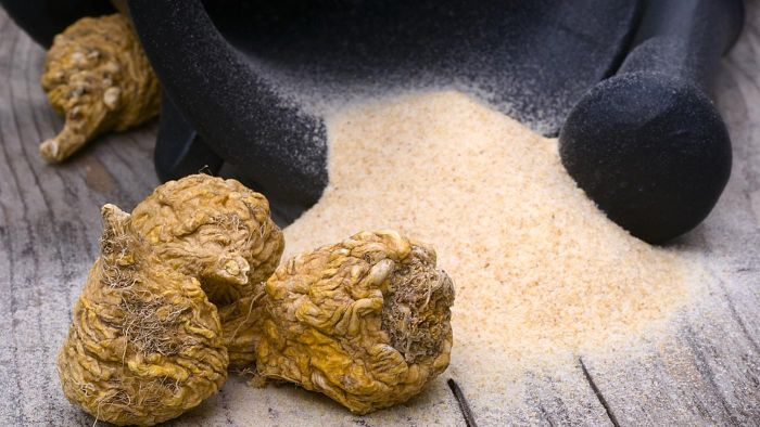 What Is Maca Root?