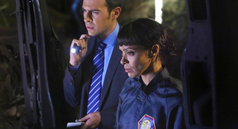 What Is a Summary of the Television Series Bones?