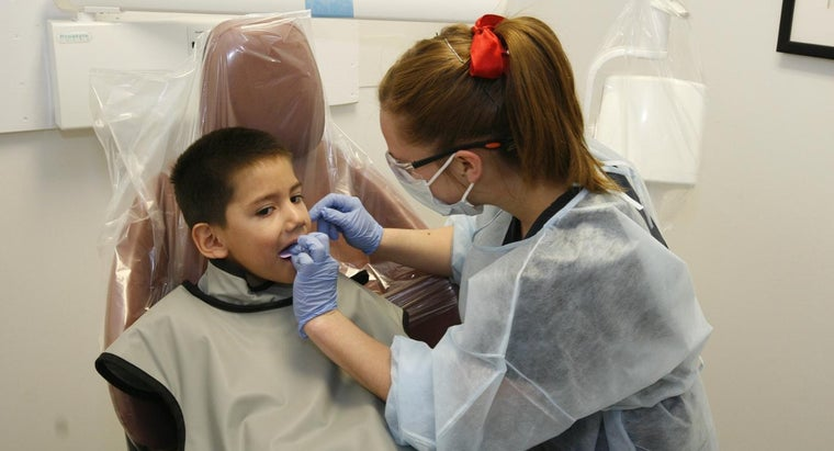 What Are Some of the Top Schools for Dental Lab Technicians?