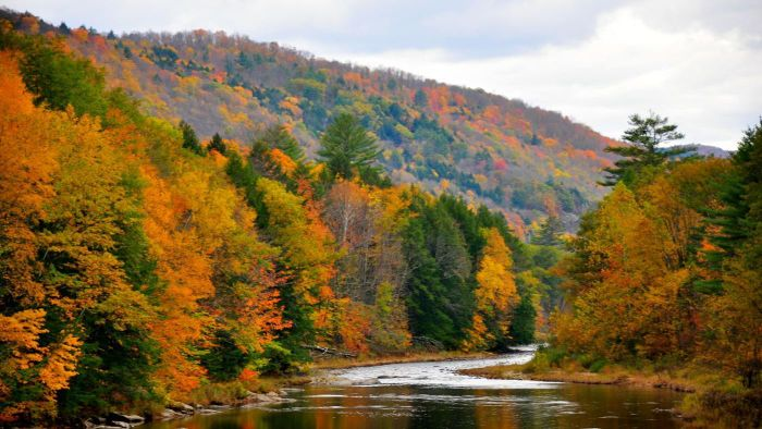 What Are the Peak Fall Foliage Dates?