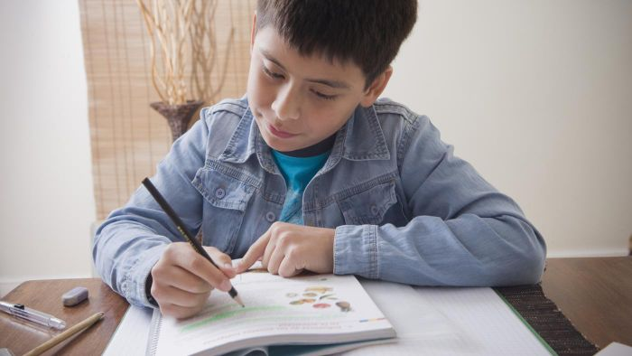 Is It Possible to Find School Math Books for Sixth Graders Online?