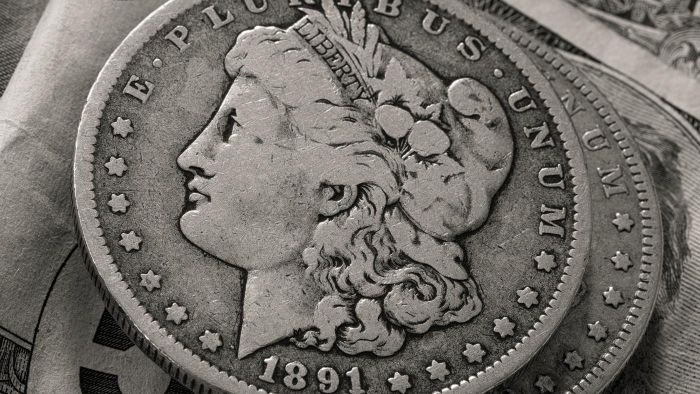 Where Can You Find a Chart That Shows the Value of Silver Dollar Coins?