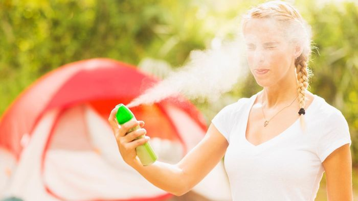 What Is a Good Yard Spray for Mosquitoes?
