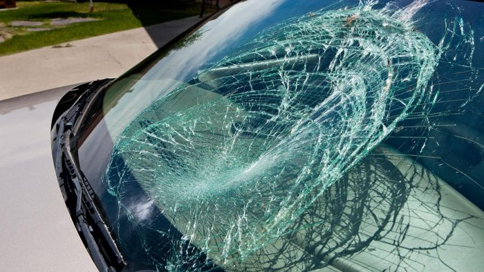 What companies replace windshields?
