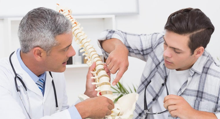 What Are Some Typical Chiropractic Fees?