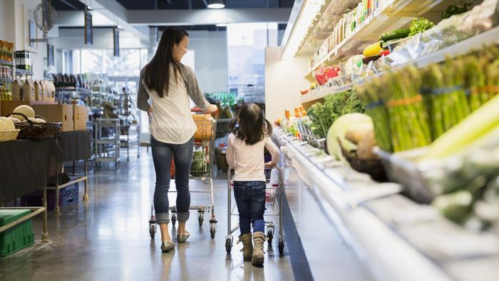 Where Can You Find Eligibility Requirements for Food Stamps Online?