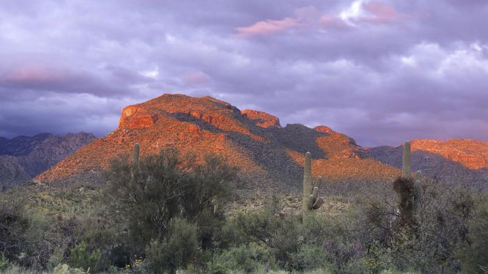 Where Is Sabino Canyon National Park?