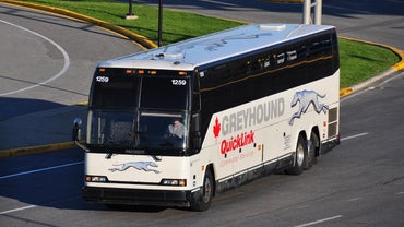 Can You Buy Greyhound Bus Tickets Online?