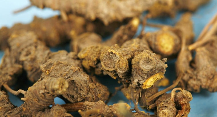 What Are the Benefits of Goldenseal Root?