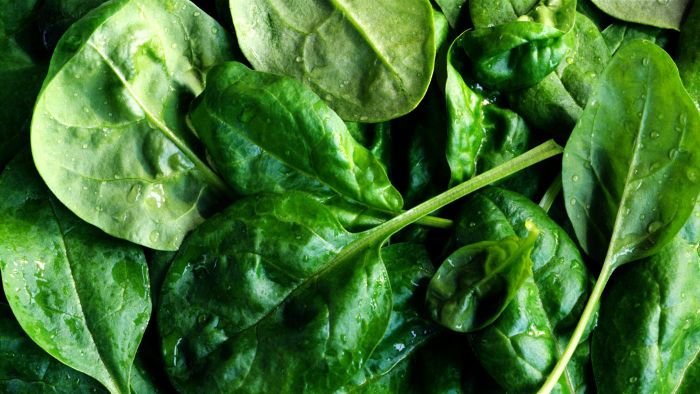 What Are Some Vegetables Rich in Iron?