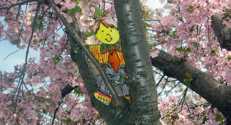 What Are Some Flat Stanley Activities for Kids?