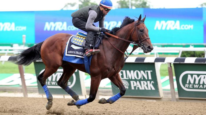 How Do You Find Information on Entries at Belmont?