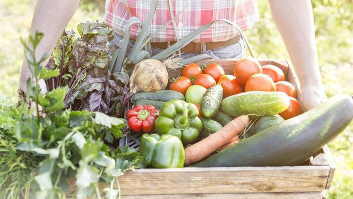 What are some no carbohydrate fruits and vegetables?