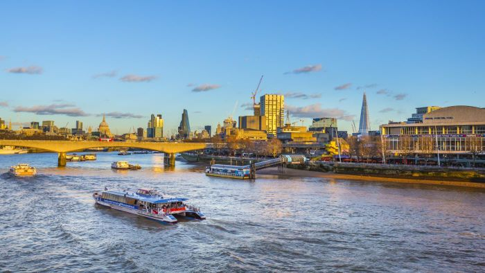 What Are Some Options for Dinner Cruises on the Thames?