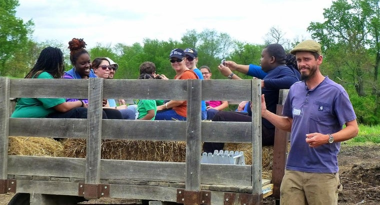 What Are Some Popular Features of Hay Rides?