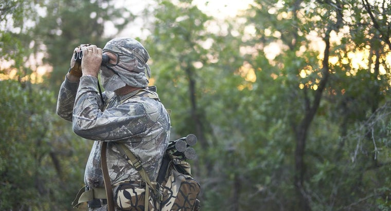 What Areas on the Map Are Deer Hunting Zones in Minnesota?