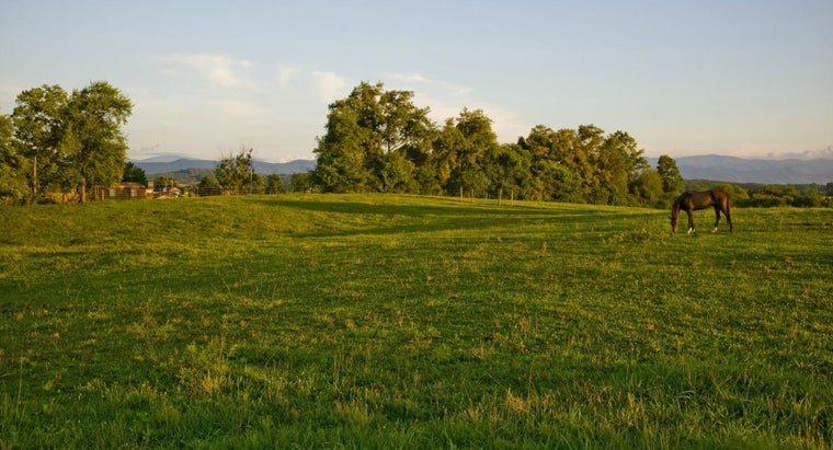 How Do You Find Cheap Land in Tennessee?