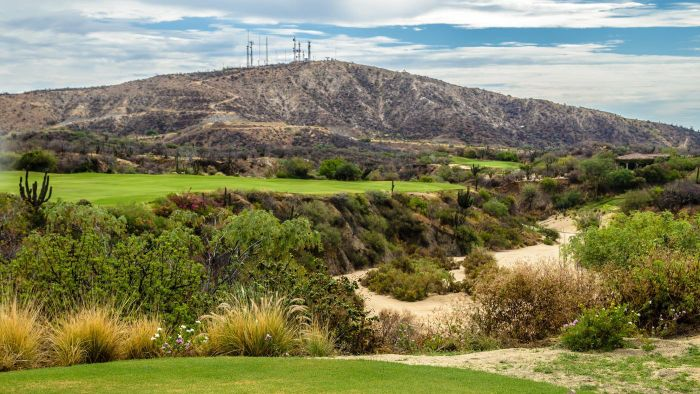 How Many Golf Courses Are There in Cabo San Lucas?