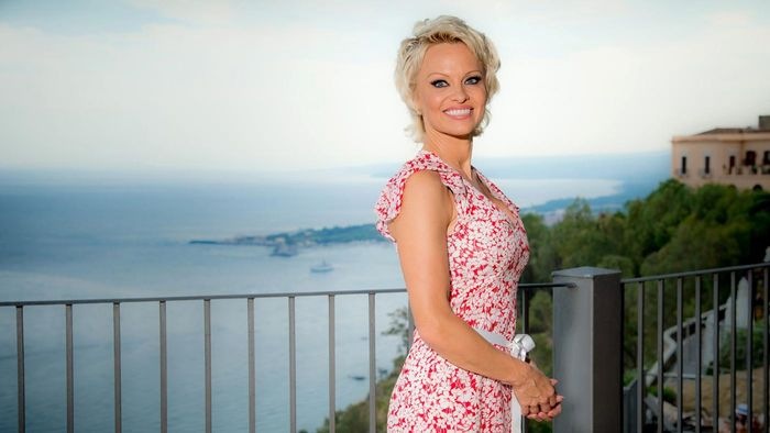 Does Pamela Anderson Display Her Own Picture Gallery to the Public?