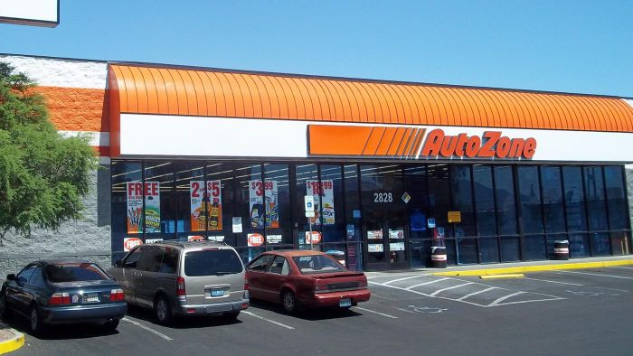 What Kinds of Parts Does AutoZone Sell?