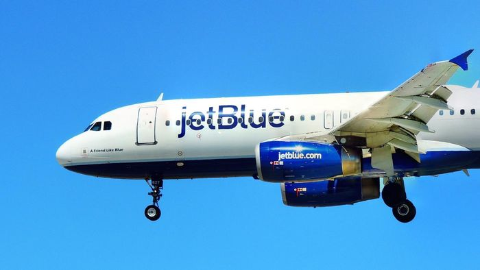 Where Can You Find a Daily Schedule for JetBlue Airways?