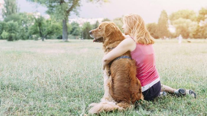 """What Are Words to the """"Rainbow Bridge"""" Poem for Grieving Pet Owners?"""