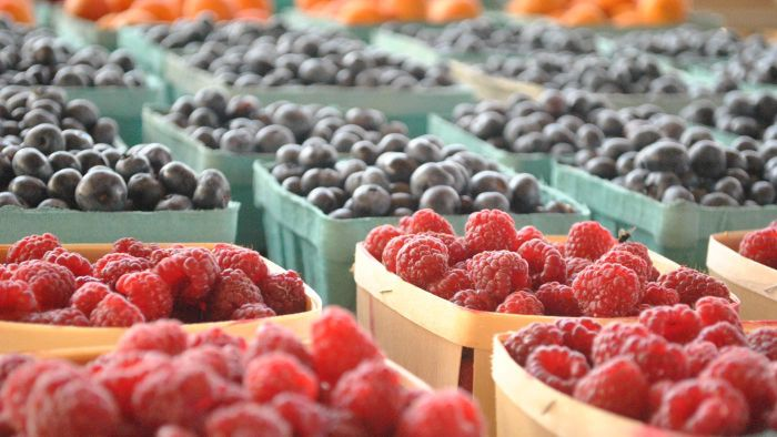What Foods Can a Person With Type 2 Diabetes Eat?
