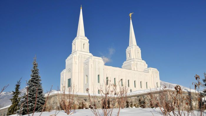 What are some ways to connect with the LDS church?