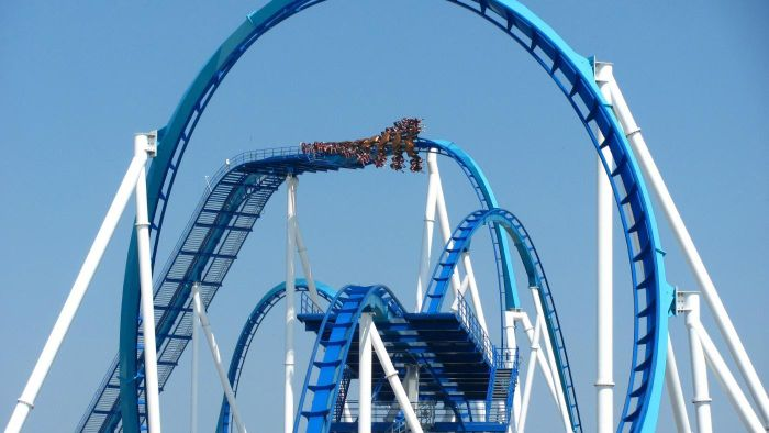 What Are Some of the Cedar Fair Amusement Parks?