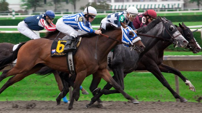 What Is the Best Online Site for Horse Racing Results?