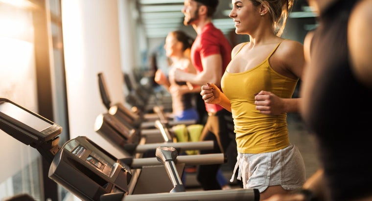 What Are the Typical Gym Membership Fees at Fitness 19?